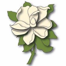 Magnolia的用戶個人資料