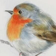 Profilo utente di Robin