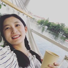 Wenjing User Profile