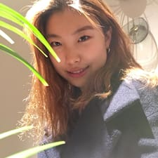 Shin Young User Profile