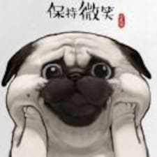 Profil Pengguna 伟克