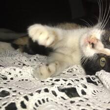 Profilo utente di Kitty