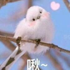 Perfil do usuário de 露酱