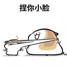 Profil korisnika Luohang