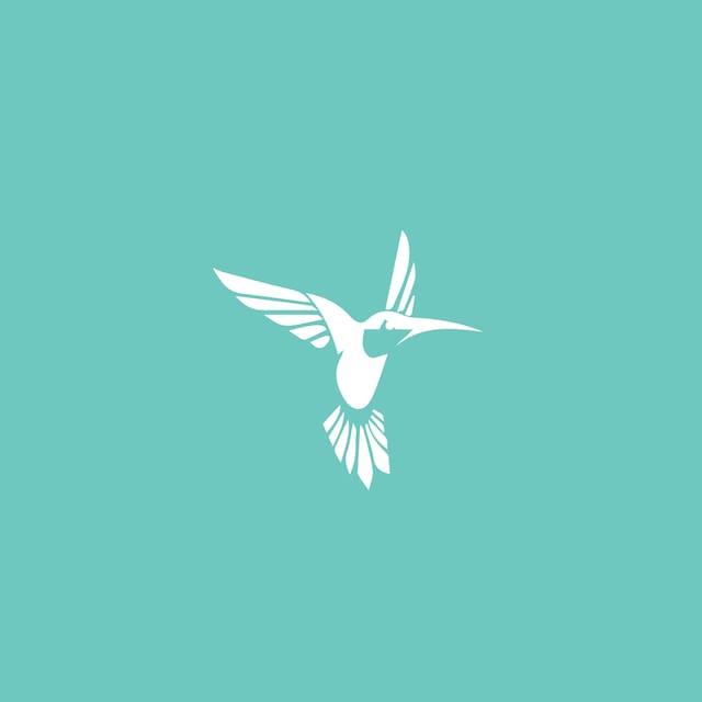 Perfil do usuário de Homing Bird Rental