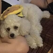 Το προφίλ του/της 欣宜