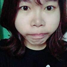 Dingzhi User Profile