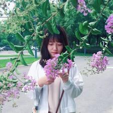 Profil utilisateur de Sakura