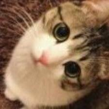 Yilia felhasználói profilja