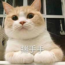 原 felhasználói profilja