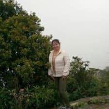 María Del Pilar User Profile