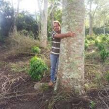 Perfil do utilizador de Novaes Florestal