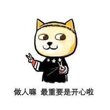 Profil utilisateur de 严浩
