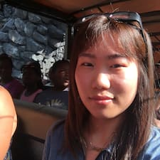 Xiaoying(Nicola) User Profile