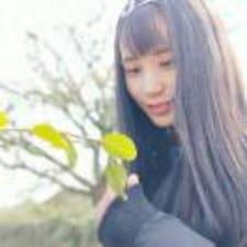 Profil Pengguna 陈婷