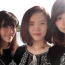 Profil Pengguna 琴乃