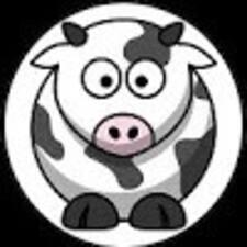 Beverley User Profile