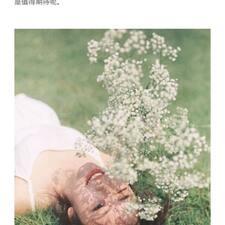 Perfil do utilizador de 新雁