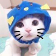 Profil utilisateur de  小小小鱼