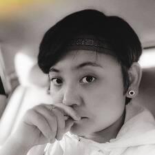 仙 felhasználói profilja