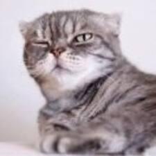 Perfil do usuário de Cat