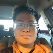 Andy User Profile