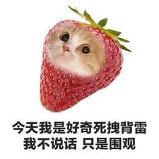 亦丽 User Profile