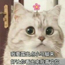 Perfil do usuário de 连三岁