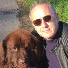Matthew & Paddy The Newfie User Profile
