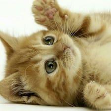 Nutzerprofil von Cat
