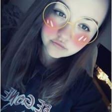 Vaiva User Profile