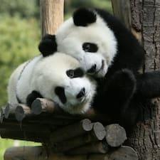 Panda Homestay - Uživatelský profil