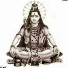 Shankar님의 사용자 프로필