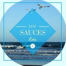 Профиль пользователя Los Sauces