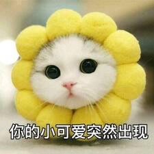 Profil utilisateur de Haoyuan