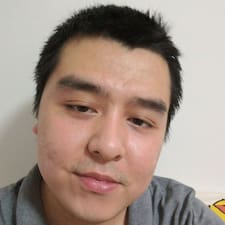 宁君 User Profile