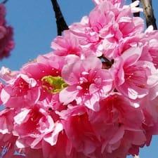 Cherry Brugerprofil
