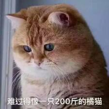 Profil korisnika 恩文