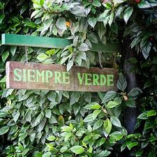 Siempre Verde Ecolodge的用戶個人資料
