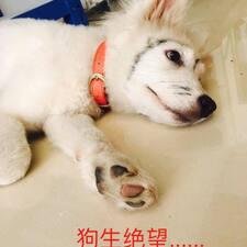 Perfil do usuário de 景新