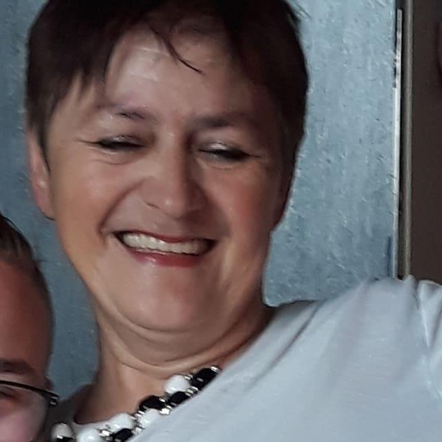 Vodič (Mirjana)