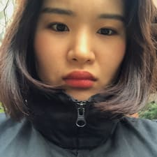 Kim的用戶個人資料