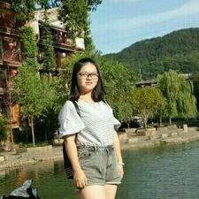 文灵 User Profile