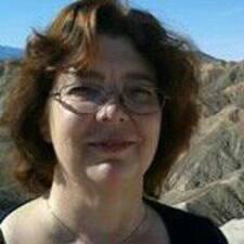 M.A.F. felhasználói profilja
