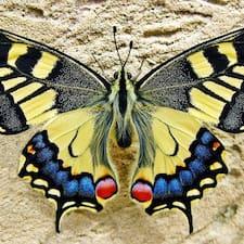 Profil utilisateur de Papillon