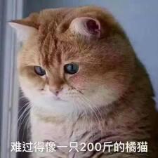 赵 Kullanıcı Profili