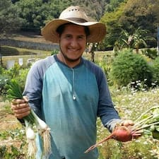 Guillermo felhasználói profilja