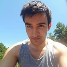 Profil utilisateur de Nino