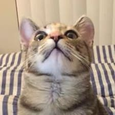 Profil korisnika Sadako