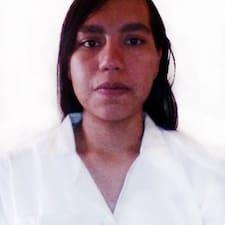 Profil Pengguna Paulina